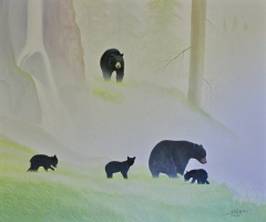2-Bears at Misty Falls