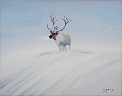 6-Caribou in Snow Storm