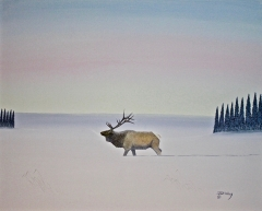 Elk in Winter Lake